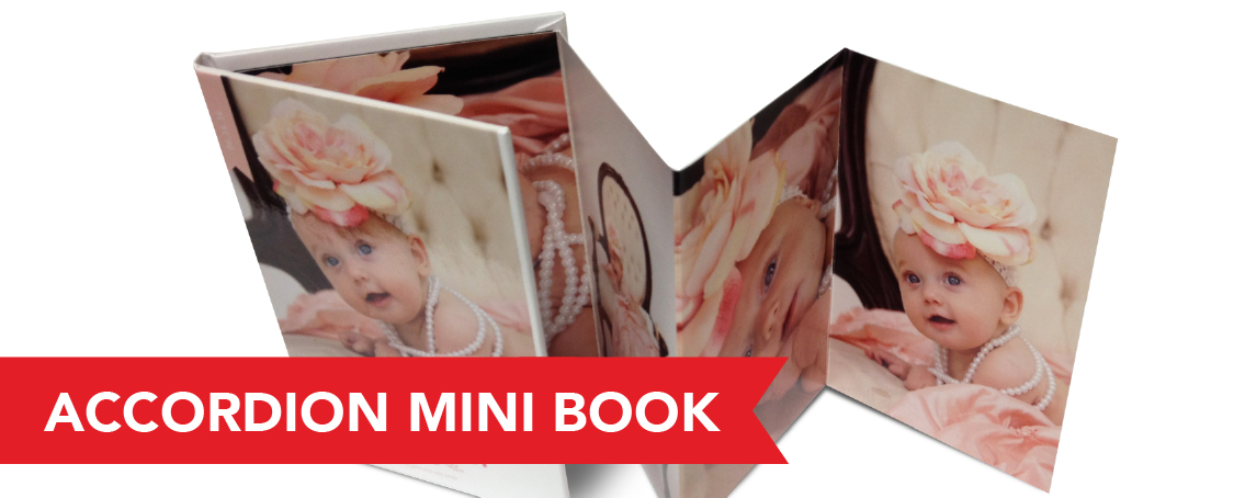 Accordion Pullout Hard Cover Professional Press Printed Accordion Mini Books