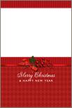 Holiday Design 1-47