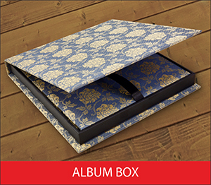 Album Box Sample Image