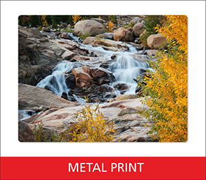 Metal Print Sample Image