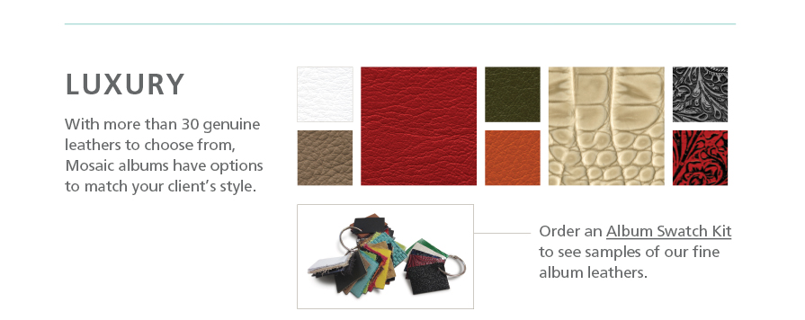 Luxurious Mosaic Album Leathers