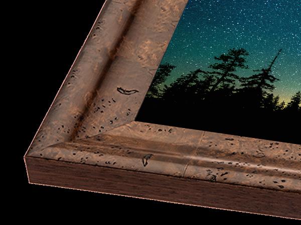 Burl Swoop Gallery Series Frame