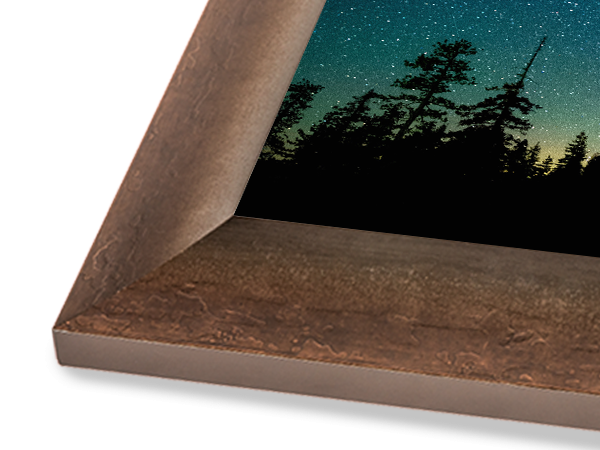 Bronze Curved Gallery Series Frame