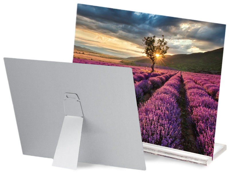 Back of a Metal Print with a Metal Easel Back & a             Lavender Field Printed on the Front of another Metal Print Sitting             in an Acrylic Stand
