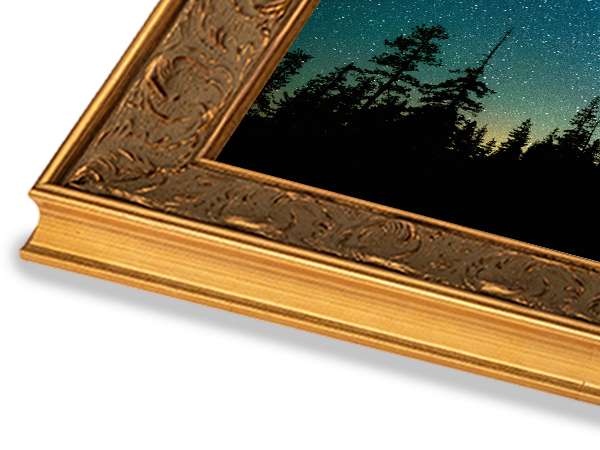 French Large Gold Ornate Series Frame