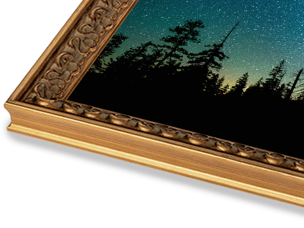 French Small Gold Ornate Series Frame