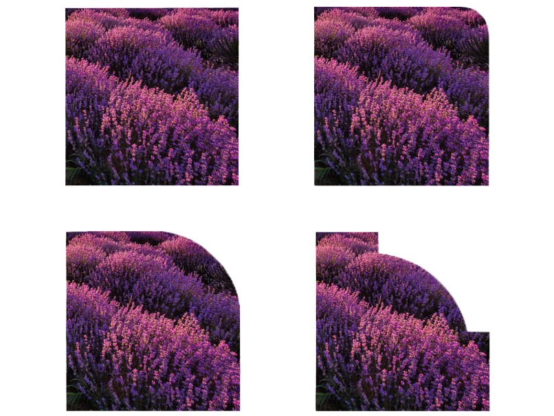 Image of a Lavender Field Finished with 4 Corner Options