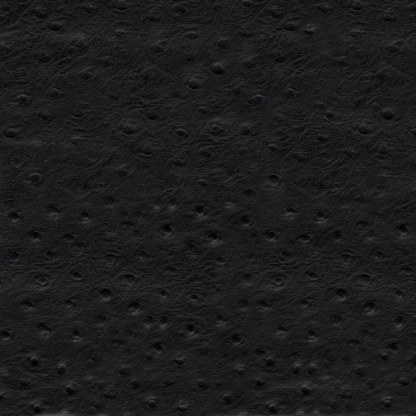 Ostrich Black Exotic Leather for Mosaic Album