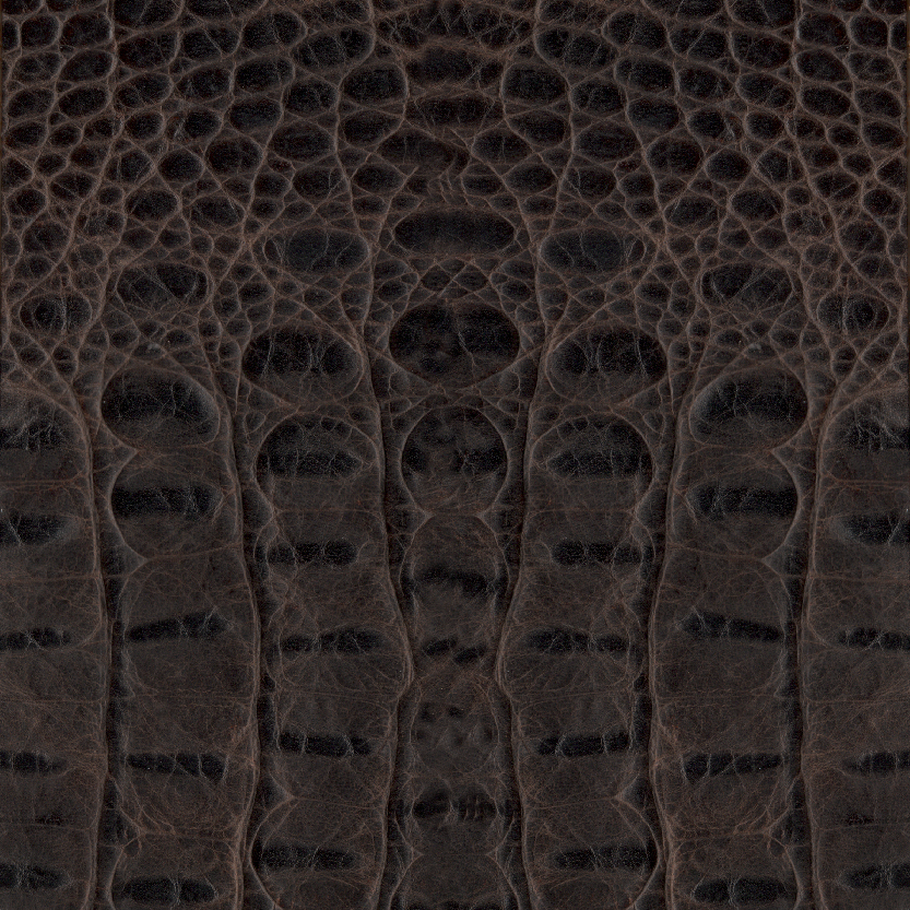 Rustic Croco Espresso Exotic Leather for Mosaic Album