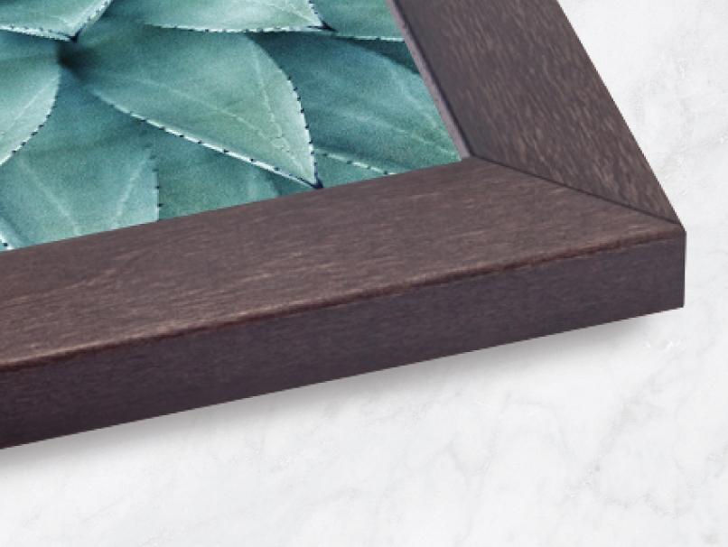 Framed Print Frames