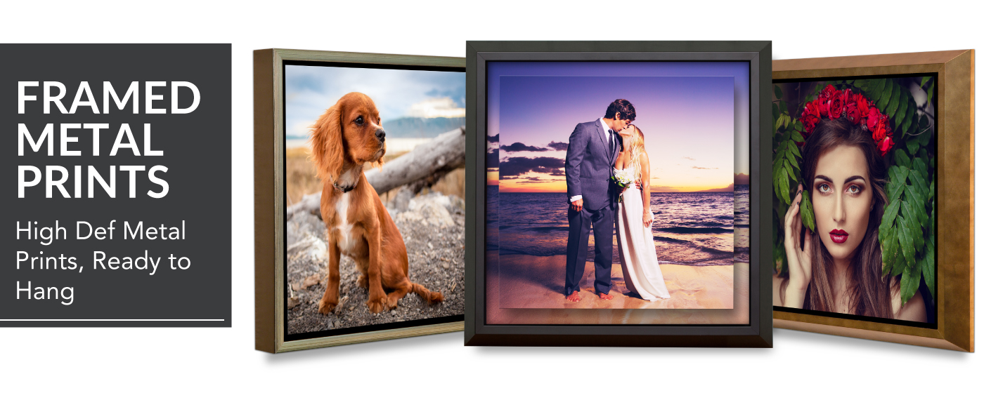 Images of a Dog, Bride & Groom on a Beach & a Woman with a Red Flower Halo Printed on Framed Metal Prints