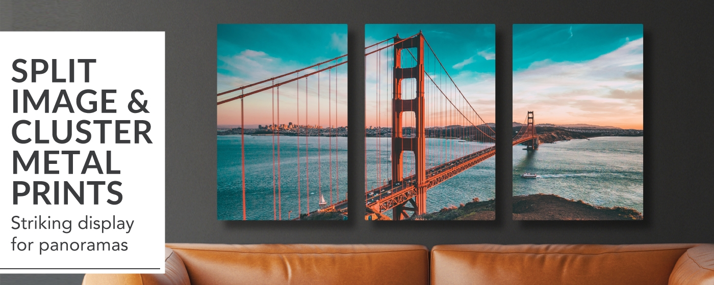 Split Image & Cluster Metal Prints