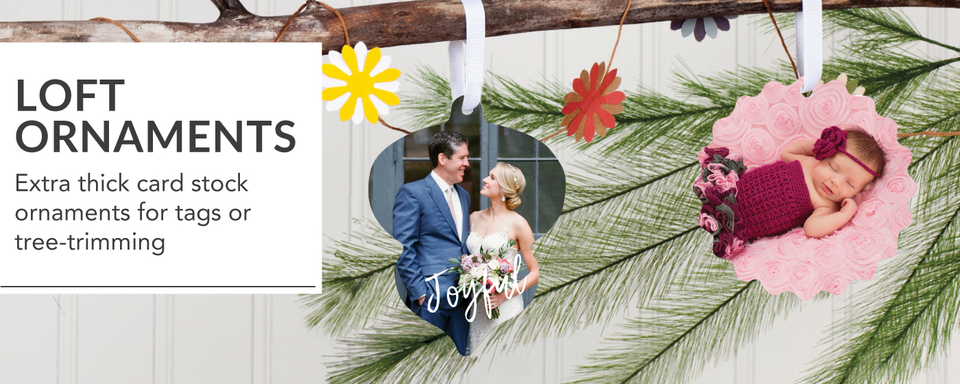 Wedding Portrait & Newborn Portrait Printed on LOFT Ornaments with White Ribbon Hanging on Tree Branch
