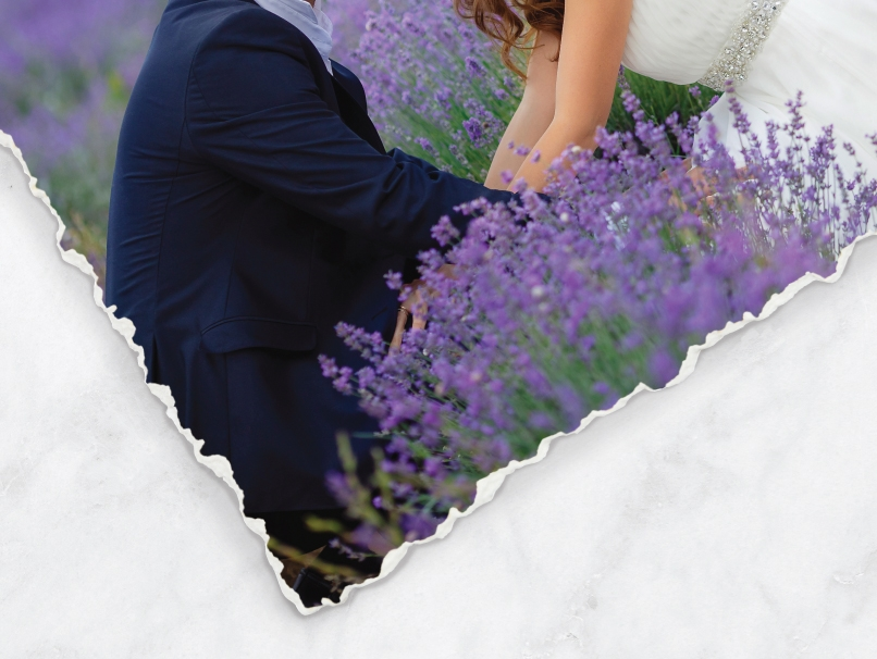 Bride & Groom in Lavender Field