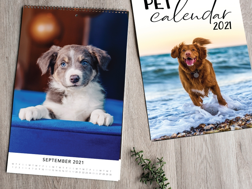 Engagement Portraits Printed on Tall Spiral Bound Modern Calendar