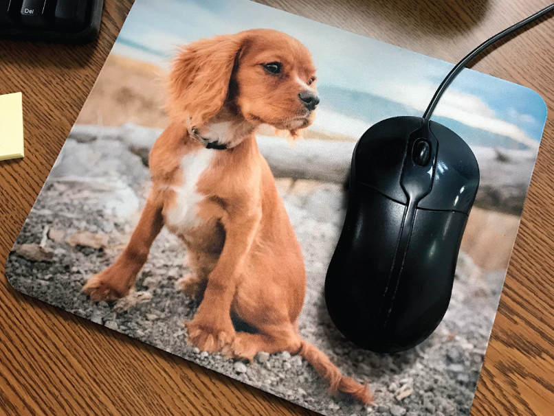 Image of a dog printed on a custom Mouse Pad sitting on desk by computer