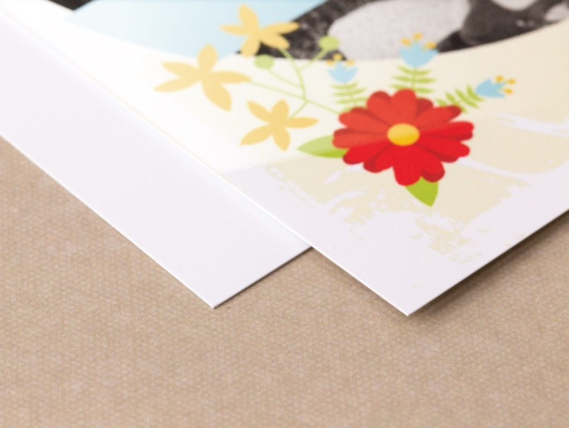Red, Yellow & Blue Flower Printed on Standard Paper with Gloss Coating