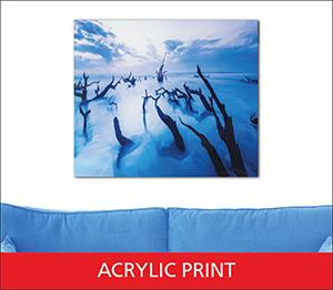Acrylic Print Sample Image