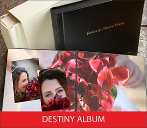 Destiny Album Sample Image