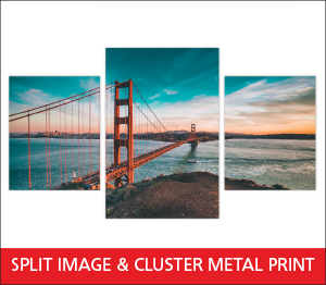 Split Image Metal Print Sample Image